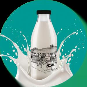 Aldhurst Farm milk bottle with turquoise background